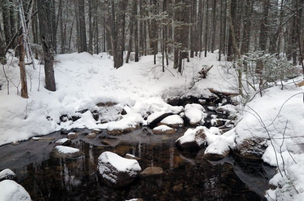 Hancock Notch Trail Winter Stream