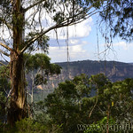 Viajefilos en Australia. Blue Mountains 038