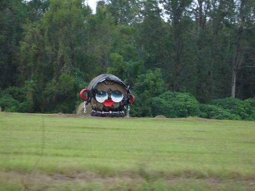 Betty Boop at Jim Bird's Hay Creations, Forkland AL