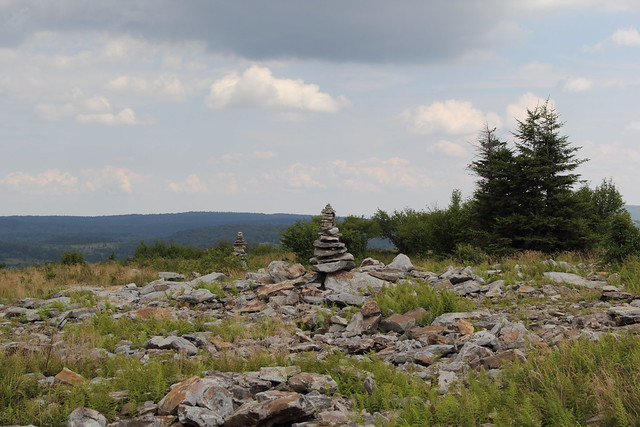 20150725_Dolly_Sods_012