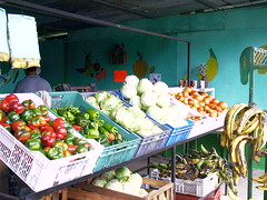 Vegetable stand panama, VCN Fruit Stand 2