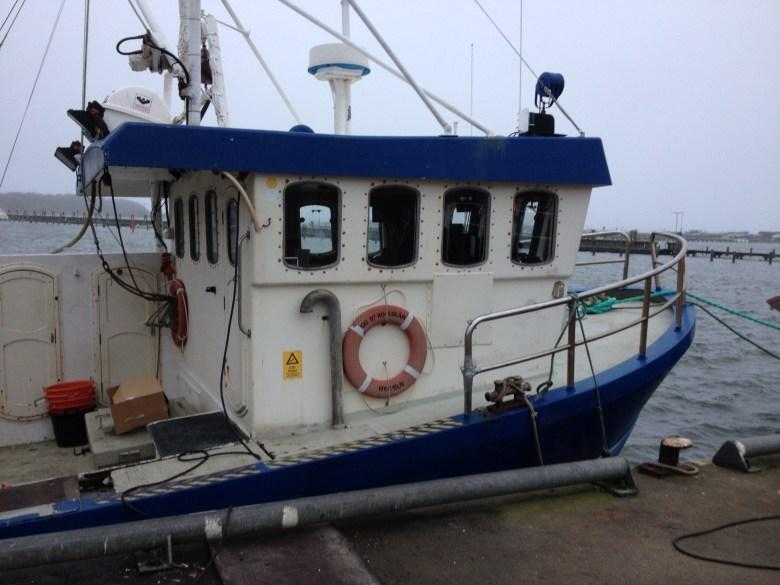 fiskebäck_juldagen_2016_ - 26