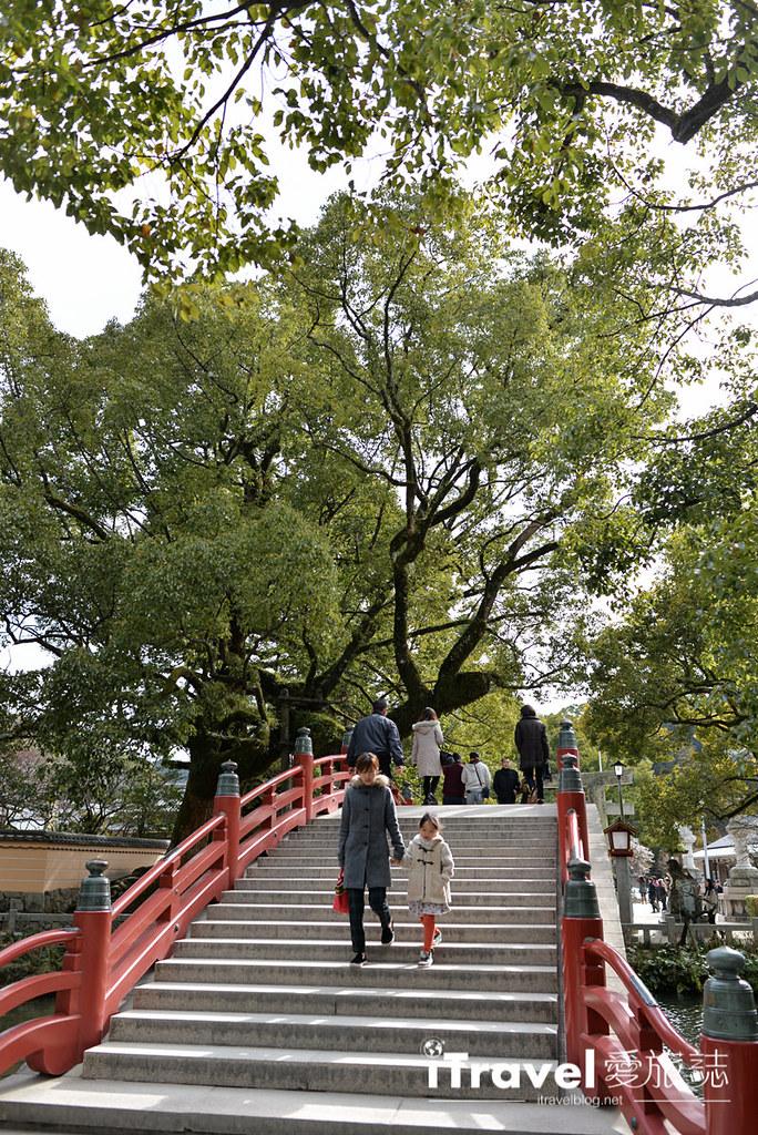 《福冈景点推荐》太宰府天满宫:学子求学之路平顺,冬梅夏绿风景各自擅场。