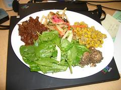 dieta białkowa wikipedia