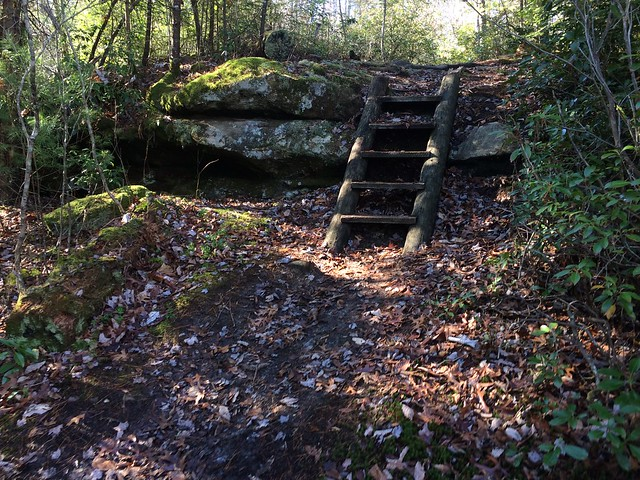 Trail Steps
