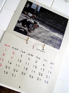 calendar pet