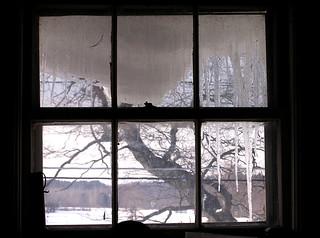 window from the inside