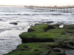 Ocean Beach Pier. San Diego, California