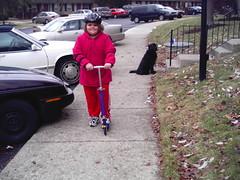 sidewalk scooterer