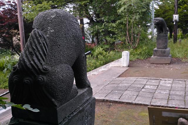 江部乙神社狛犬の後ろ姿
