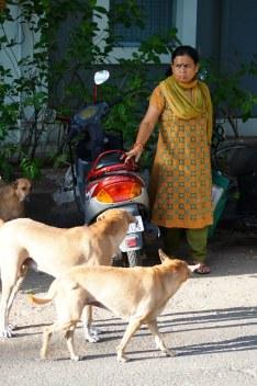 Indien India Pondicherry Puducherry Blog (38)