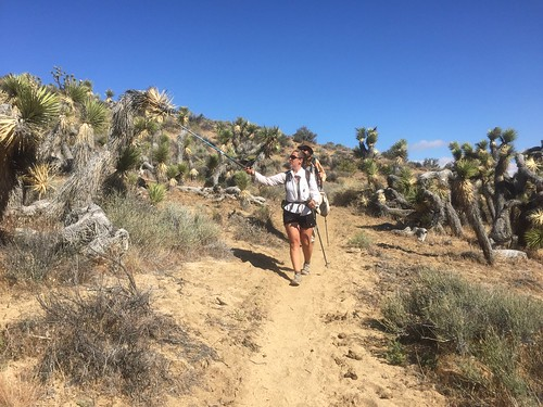 PCT Day 46