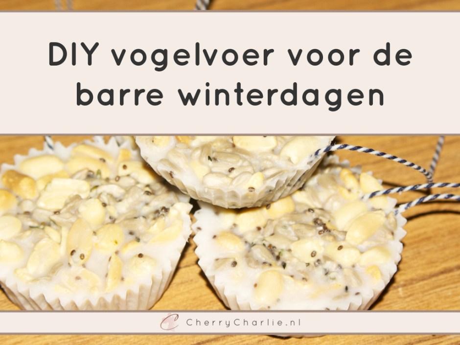DIY vogelvoer voor de barre winterdagen • CherryCharlie.nl
