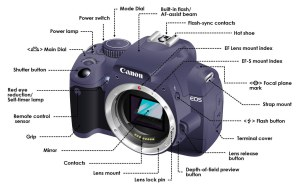 DSLR camera functions diagram | This diagraminfographic sho… | Flickr