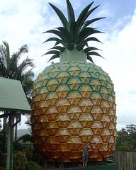 DSC00596 - Giant Pineapple