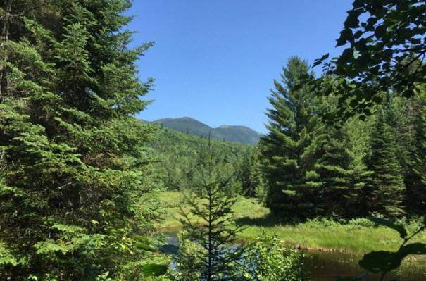 Bigelow Sneak Peak