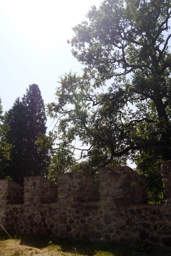 20150705 Schloss Hallwyl 040