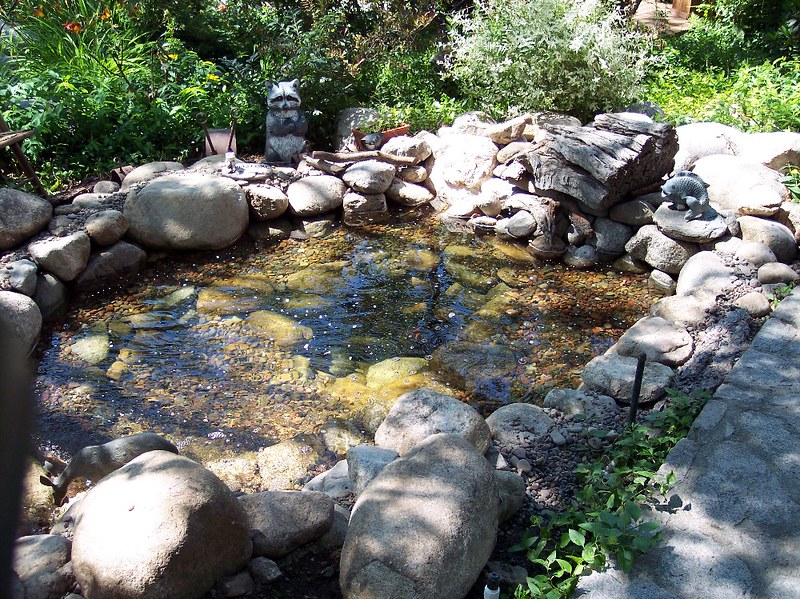 Top 50 garden pond designs that will rock your world for Design a pond software
