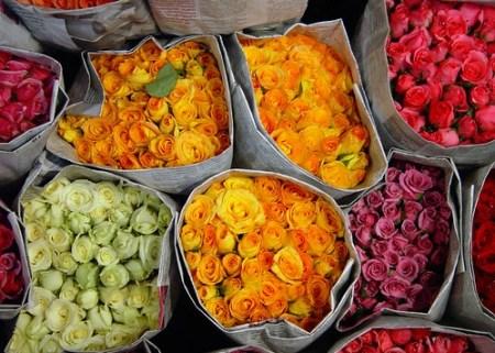 mercato dei fiori bangkok