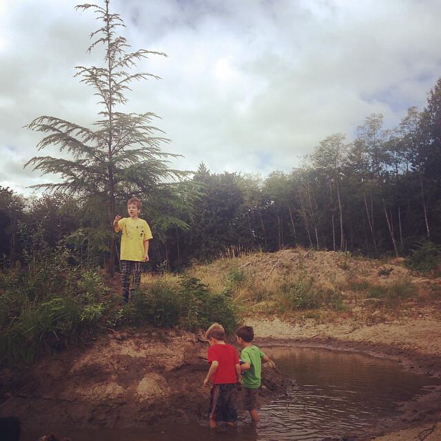 Trespasser Lake