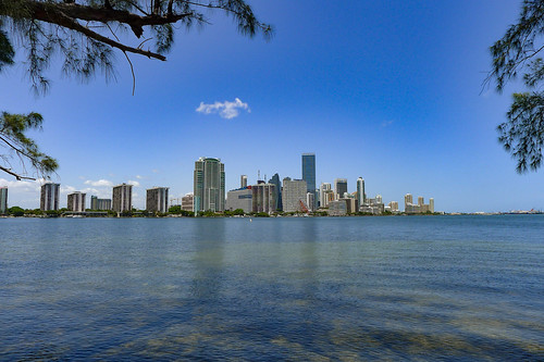 Miami Skyline-002