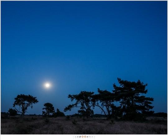 Een nachtelijk landschap met de Volle Maan. Het is te donker voor details in het landschap, en de Maan is juist te fel voor details. (24mm brandpunt)