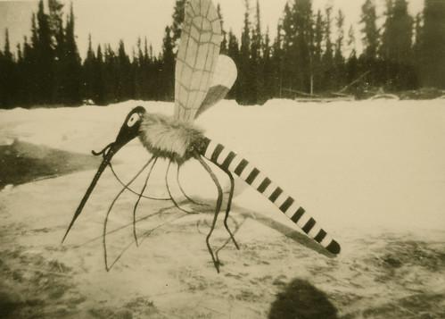 Mosquito 1/4