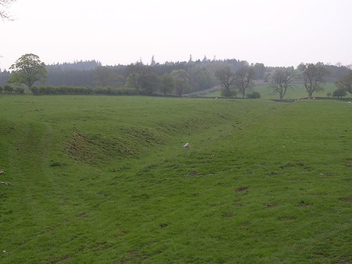 The ditch east of Tower Tye