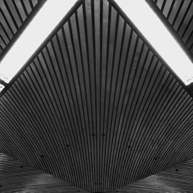 13/365 symmetry
