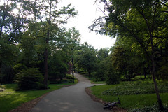 Taft Road gardens