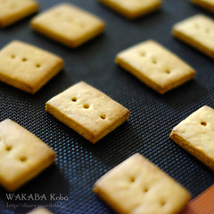きなこクッキー 20150626-DSCF7579