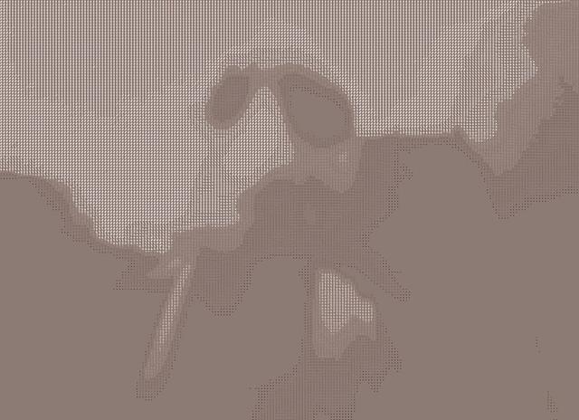 robben (ASCII)