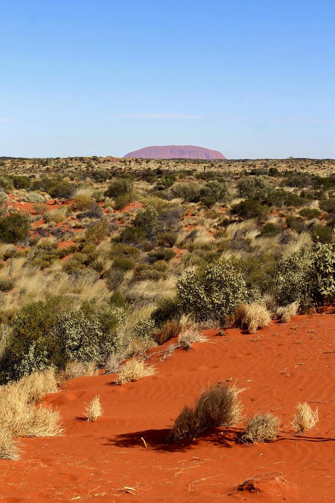 10 grunde til at tage på road trip gennem den australske outback