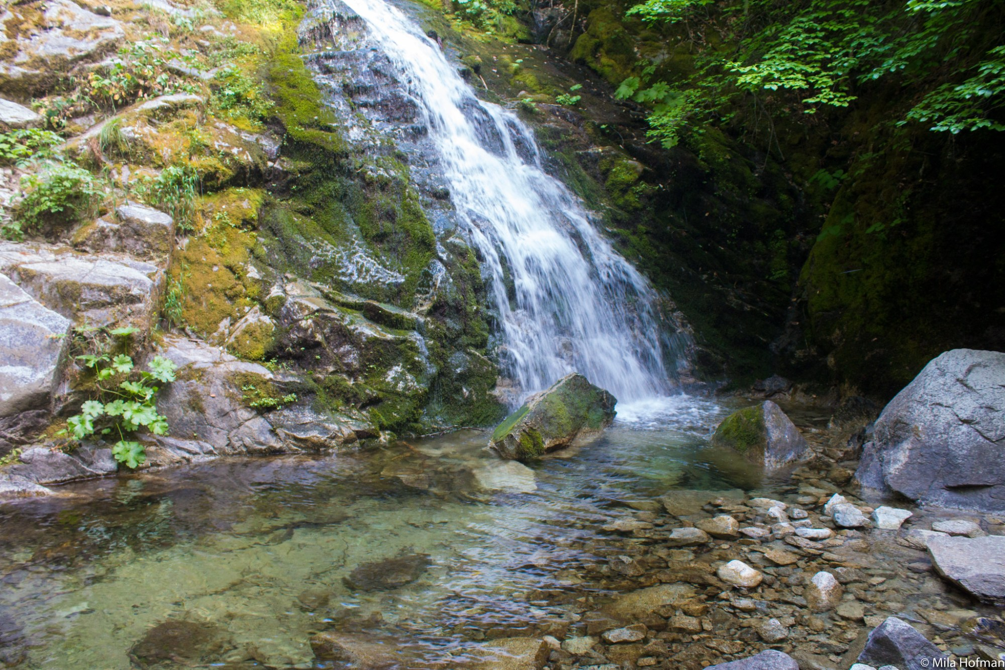 Whiskeytown waterfall
