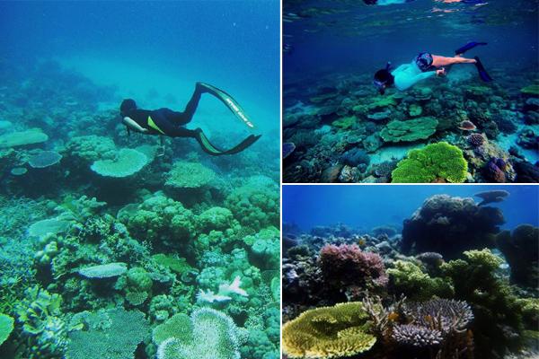 Pantai Pasir Panjang Labengki 3