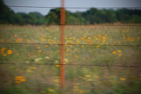 Drive-By Field