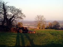 Stalbridge Park