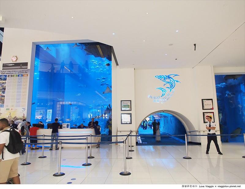 Dubai Mall,杜拜,杜拜水族館,杜拜購物中心,水族館,購物中心 @薇樂莉 Love Viaggio   旅行.生活.攝影