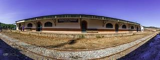 Trenes Estación de Zarandas. 06-11-16.