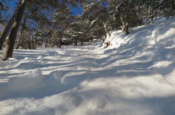 Osceola Trail Steep Winter Climb