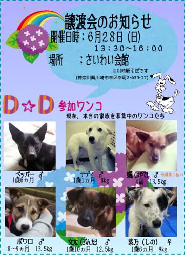 20150628_satooyakai_dd_2
