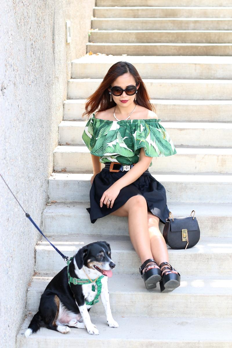 Palm-leaf-print-outfit-louis-beagle-dog