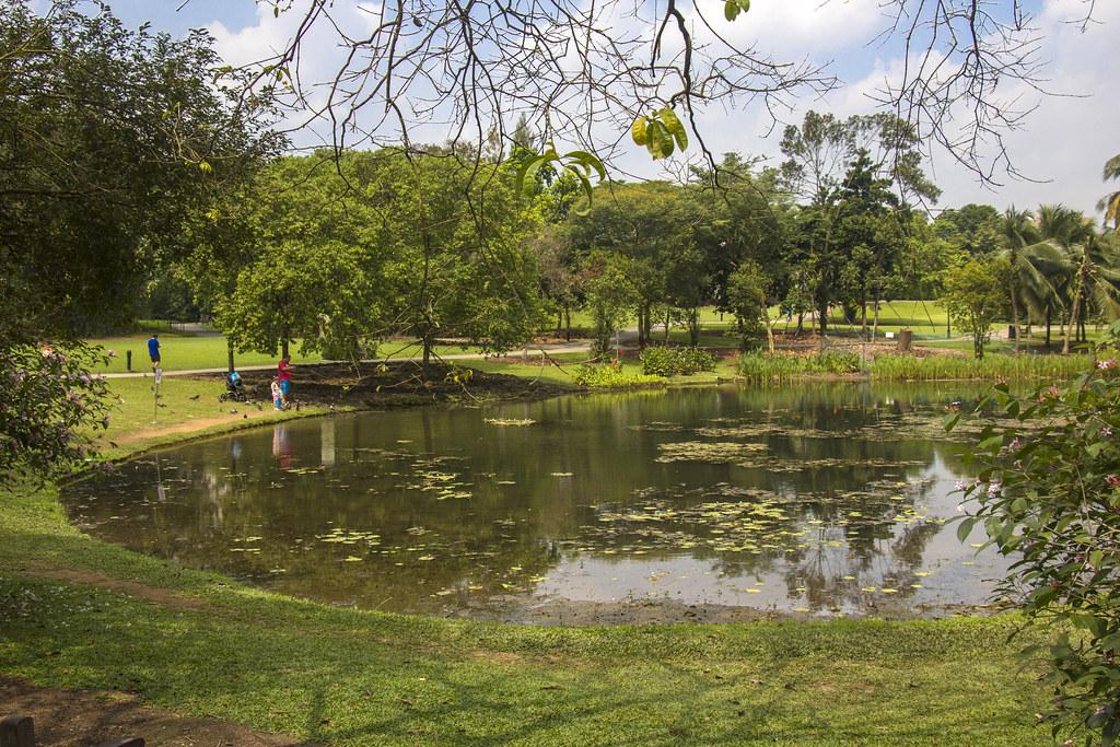 Botanisk have i Singapore