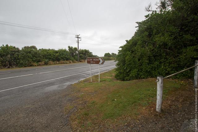 NZ_day9-82