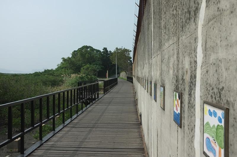 紅樹林自然步道DSCF6153