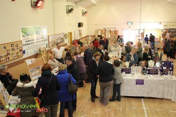 Kilmovee Craft Fair 2015 (18)