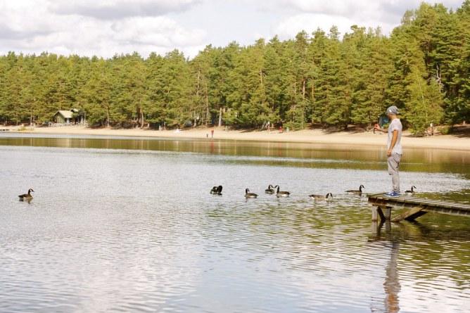 Sääksjärvi etelä-suomen kirkasvetisin järvi