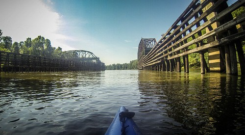 Savannah River Paddling-163