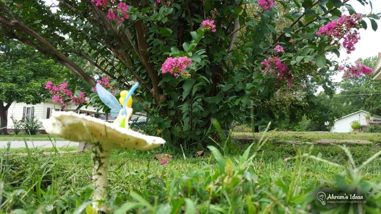 Mushroom Fairy 006