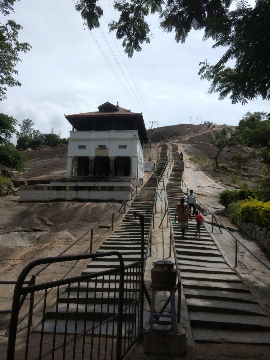 steps to bahubali gomateshwara sravanabelagola